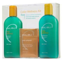 Hair Color Wellness System Kit