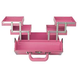 Medium Train Case - Pink