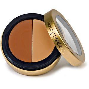 Circle and Delete Concealer 3