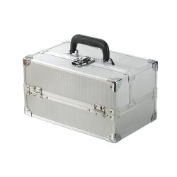 Medium Train Case - Silver